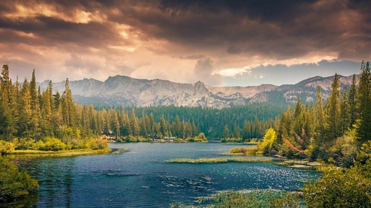 Världens sju längsta floder